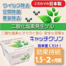 キャッチクリン【ウイルス・菌・悪臭を除去!】置き型タイプ